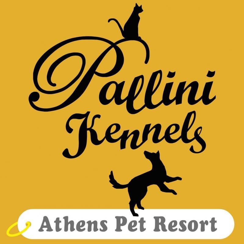 PALLINI KENNELS ATHENS PET RESORT