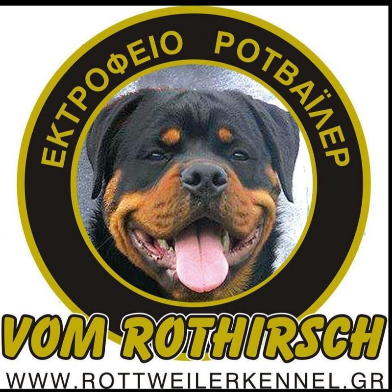ΡΟΤΒΑΪΛΕΡ VOM ROTHIRSCH -Εκτροφείο Rottweiler