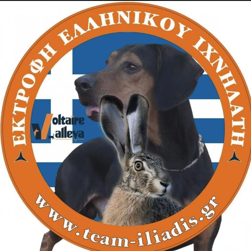 TEAM ILIADIS - Εκτροφείο Σκύλων