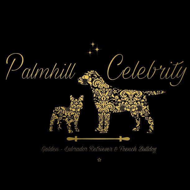 M.C. of PALMHILL