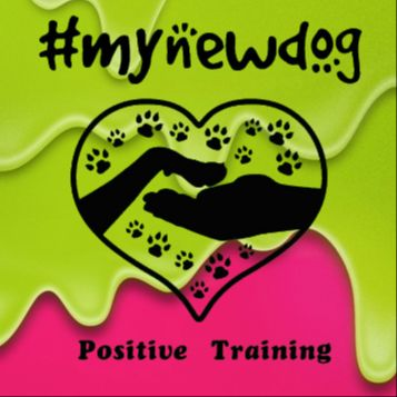 MYNEWDOG POSITIVE TRAINING