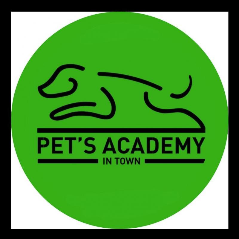 PETS ACADEMY